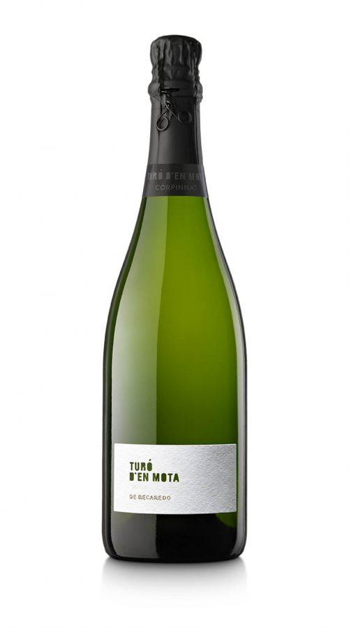 Ampolla Turó d'en MOta